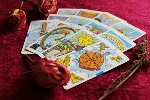 psychic tarot Uva Wine Plymouth